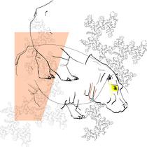 Hippo destructuré