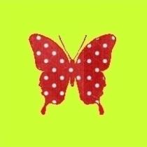 Papillon aux petits pois