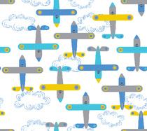 avion de léon bleu blanc