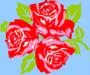 Big Trois Fleurs bleu - Nobre Joana - Sam'Oz
