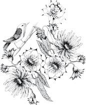 L'oiseau boudeur...
