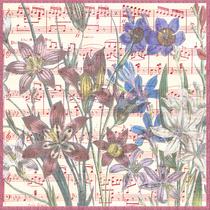 Fleurs musicales : Bouquet Fleuri