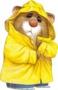 marmotte imper jaune