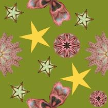 Tissu fleurs et étoiles sur fond kaki