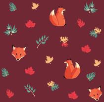 Renards d'automne