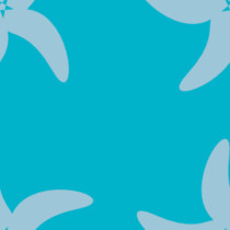 Etoiles Aquamarine sur fond Scuba Blue
